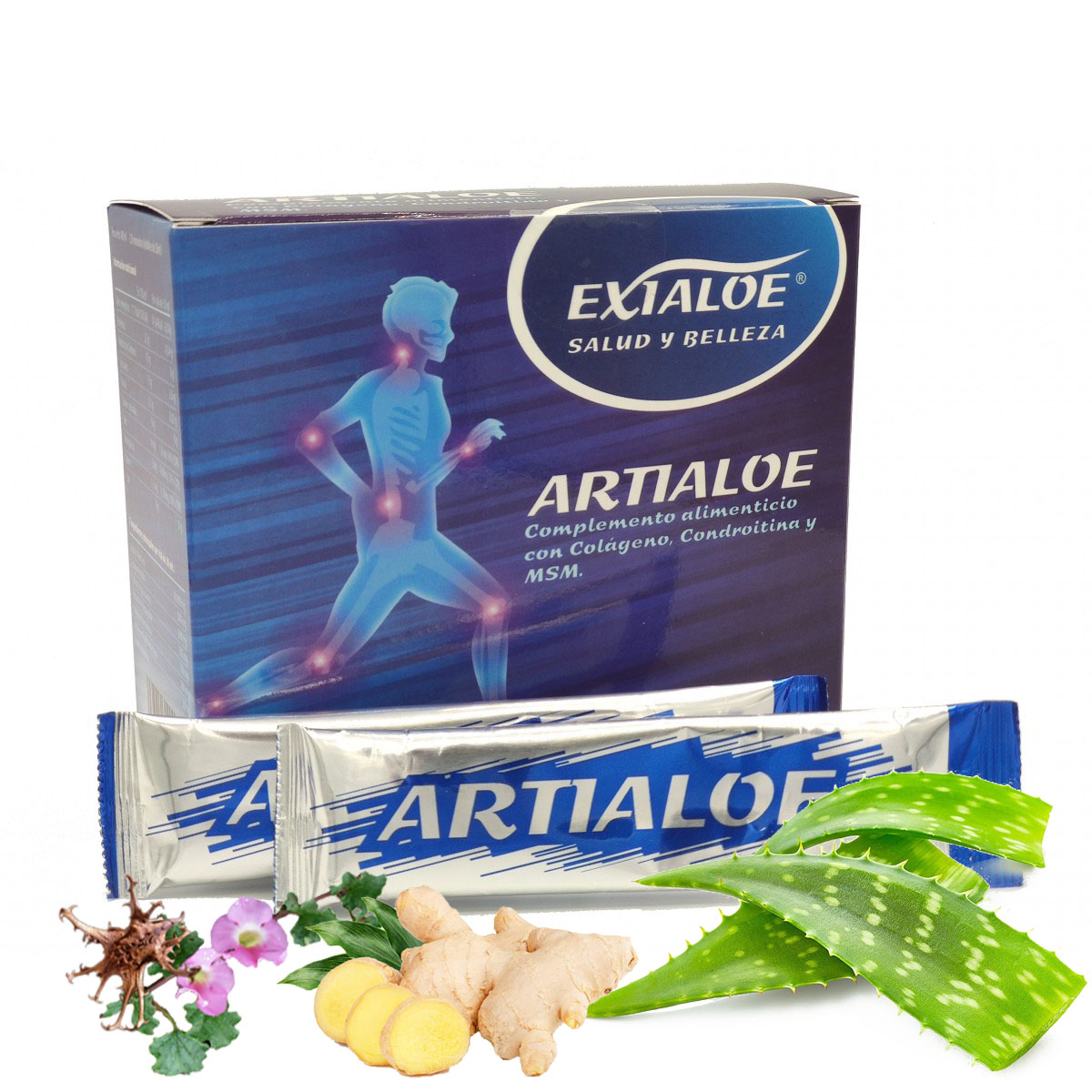 artialoe exialoe